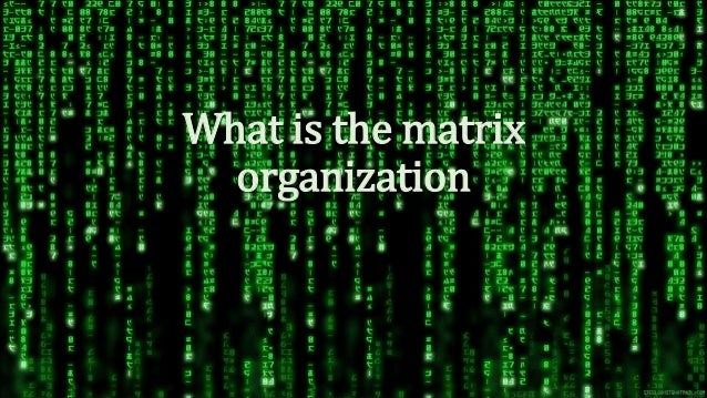 What is the matrix organization
