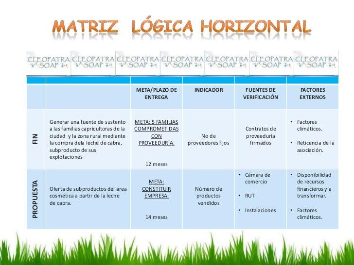 Matriz de marco lógico CLEOPATRA SOAP