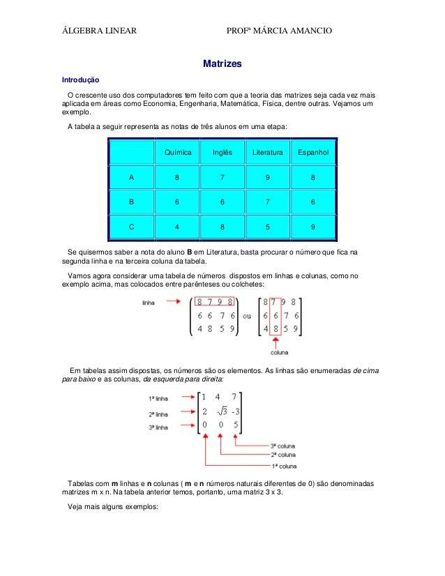 ÁLGEBRA LINEAR  PROFª MÁRCIA AMANCIO  Matrizes Introdução O crescente uso dos computadores tem feito com que a teoria das ...