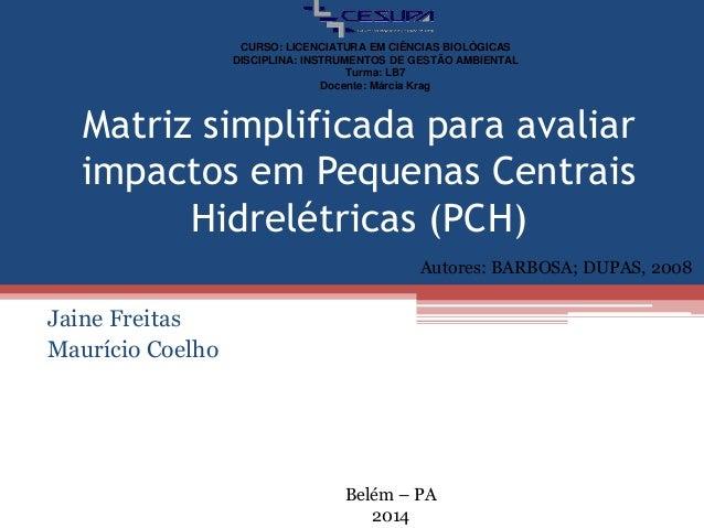 Matriz simplificada para avaliar impactos em Pequenas Centrais Hidrelétricas (PCH) Jaine Freitas Maurício Coelho Autores: ...