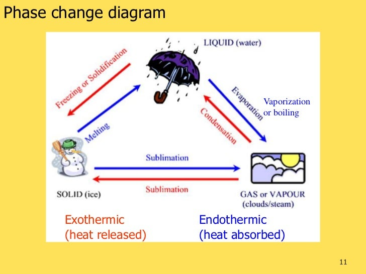 Venn Diagram Endothermic And Exothermic Vatozozdevelopment