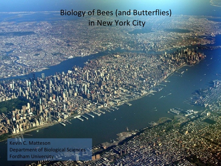 Biology of Bees (and Butterflies)  in New York City Kevin C. Matteson Department of Biological Sciences Fordham University