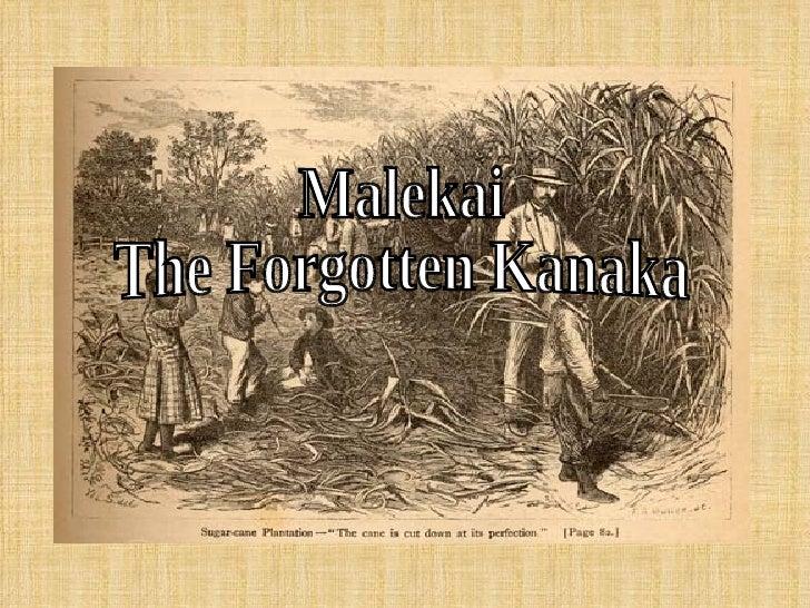 Malekai The Forgotten Kanaka