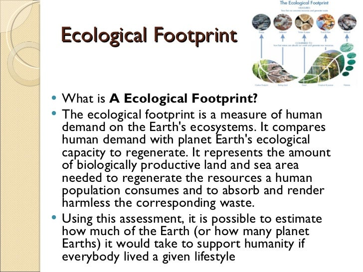 weaknesses of the ecological footprint environmental sciences essay The ecological footprint, therefore, measures the amount of potential impact a person's daily life has on the environment by reducing the amount of greenhouse gases produced by people's lifestyle, they can reduce the footprint and help slow climate change on earth.