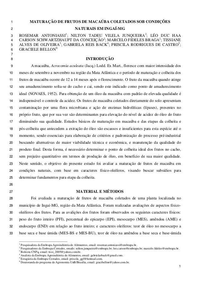 MATURAÇÃO DE FRUTOS DE MACAÚBA COLETADOS SOB CONDIÇÕES 1 NATURAIS EM INGAÍ-MG 2  ROSEMAR ANTONIASSI1; NILTON TADEU VILELA ...