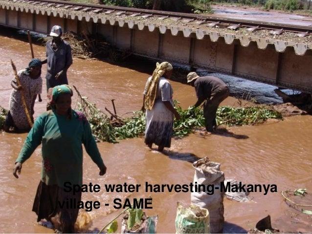 Spate water harvesting-Makanya village - SAME 13
