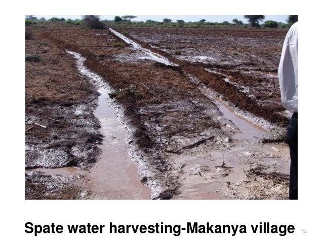 Spate water harvesting-Makanya village 14