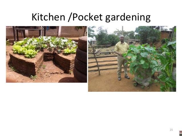 21 Kitchen /Pocket gardening