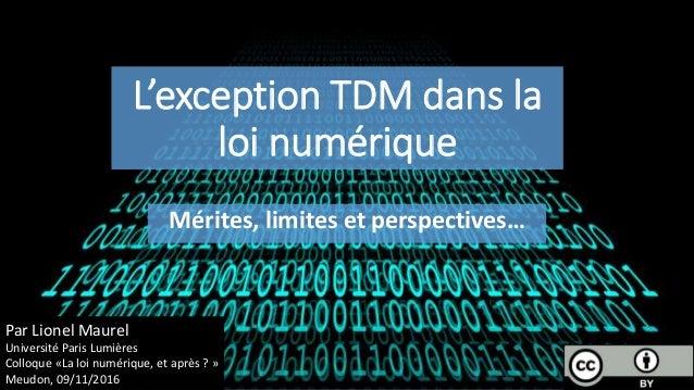 L'exception TDM dans la loi numérique Mérites, limites et perspectives… Par Lionel Maurel Université Paris Lumières Colloq...