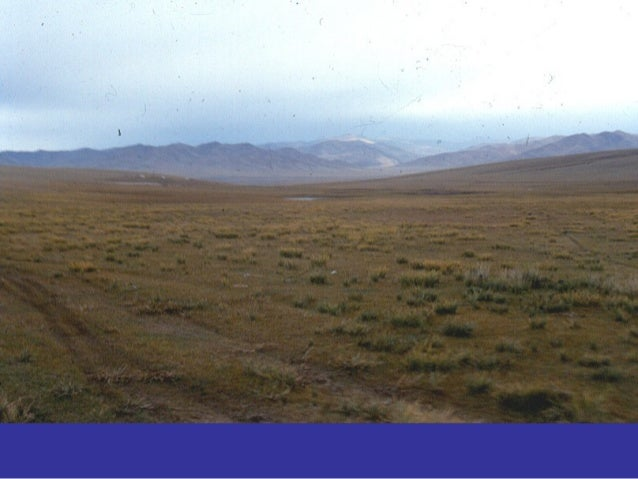 WHILE VERY LITTLE INFORMATION COULD BE RECOVERED FOR THEIR RESIDENCES AND ECONOMY, THE VISIBILITY OF NOMADS IN THE ARCHAEO...