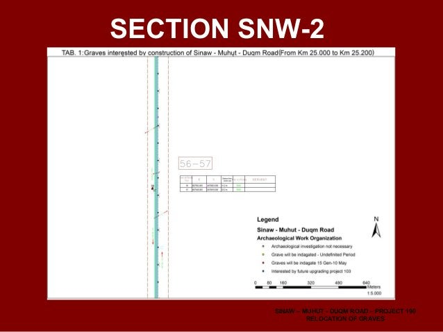 SNW-3