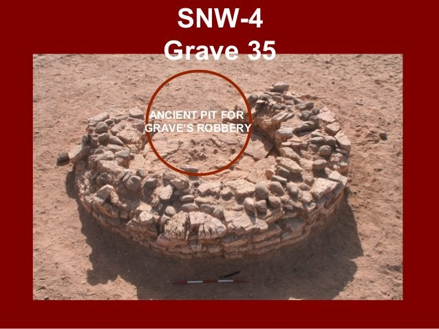 SNW-6