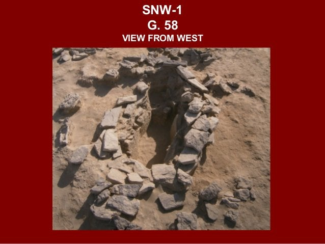 A LATE IRON AGE CAMEL'S GRAVE 21104 FROM SAMAD SINAW GRAVE 59