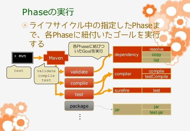 Phaseの実行 ライフサイクル中の指定したPhaseま で、各Phaseに紐付いたゴールを実行 する 各Phaseに結びつ resolve いたGoalを実行  > mvn test  dependency  Maven validate c...