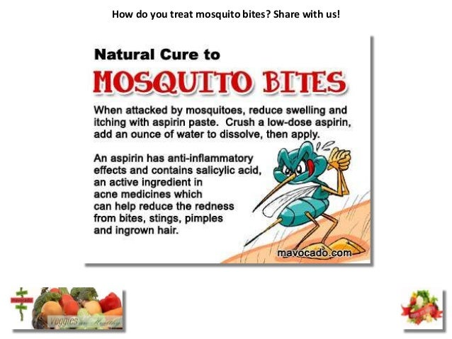 How do you treat mosquito bites? Share with us!