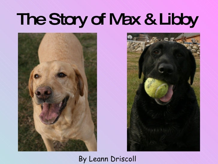 The Story of Max & Libby   By Leann Driscoll