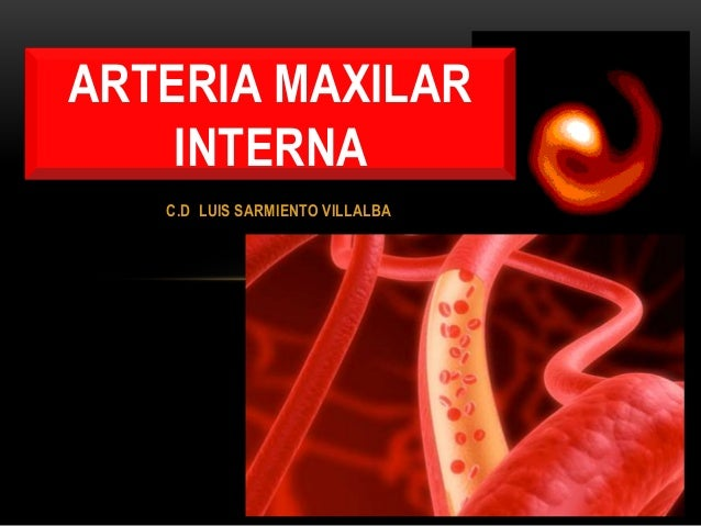 C.D LUIS SARMIENTO VILLALBA ARTERIA MAXILAR INTERNA