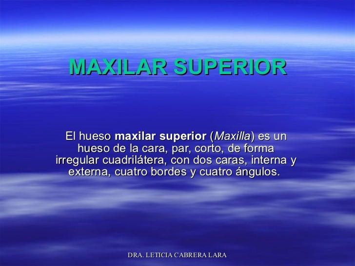 MAXILAR SUPERIOR El hueso  maxilar superior  ( Maxilla ) es un hueso de la cara, par, corto, de forma irregular cuadriláte...