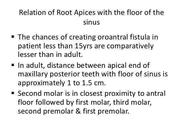 Maxillary sinus for Floor of the maxillary sinus