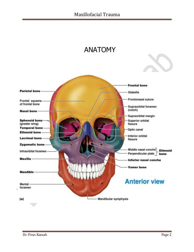 Assessment of maxillofacial trauma in emergency department | World ...