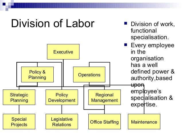 Bureaucracy theory
