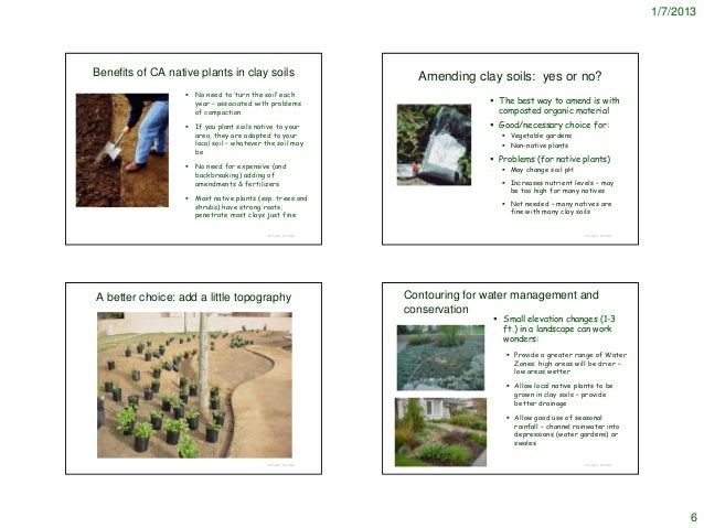 ... 6. 1/7/2013Benefits Of CA Native Plants In Clay Soils Amending ...