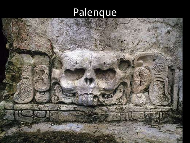 disappearance of the mayan civilization Researchers have been diving into and working around cenotes, the maya   advanced civilisation suddenly disappeared, maya mystery solved in belize.