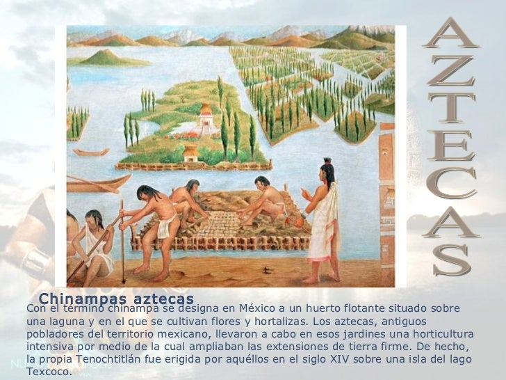chinampas aztecas - photo #21