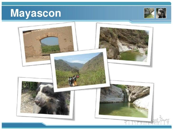 Mayascon<br />