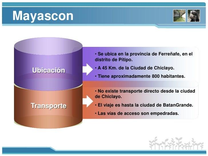 Mayascon<br /><ul><li>Se ubica en la provincia de Ferreñafe, en el distrito de Pítipo.