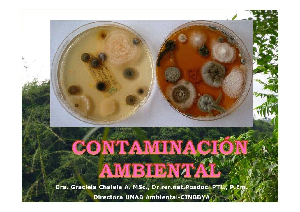 Dra. Graciela Chalela A. MSc., Dr.rer.nat.Posdoc. PTL., P.Em.                                    30/05/2009            Dir...