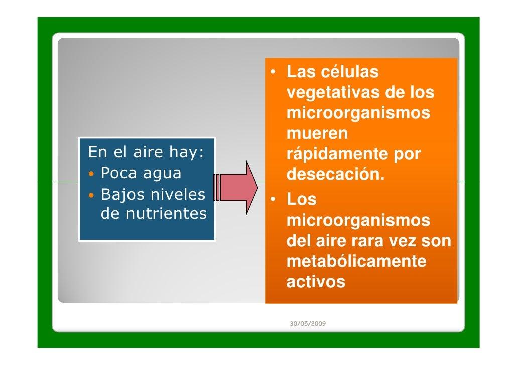 • Las células                    vegetativas de los                    microorganismos                    muerenEn el aire...