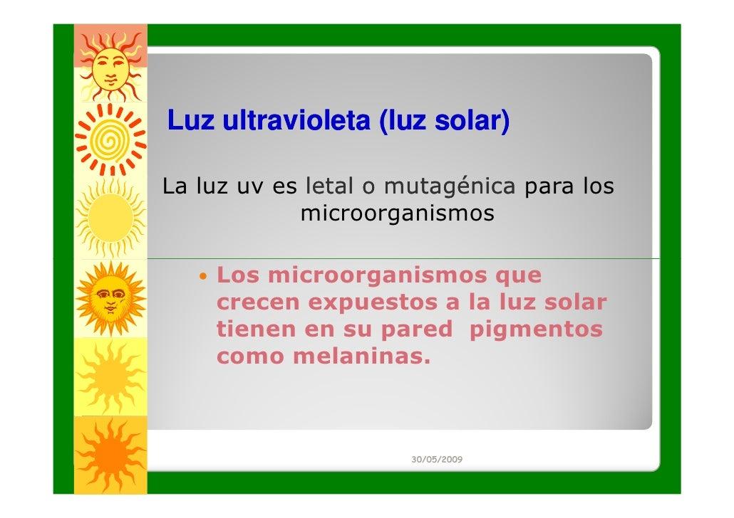 Luz ultravioleta (luz solar)La luz uv es letal o mutagénica para los            microorganismos    Los microorganismos que...