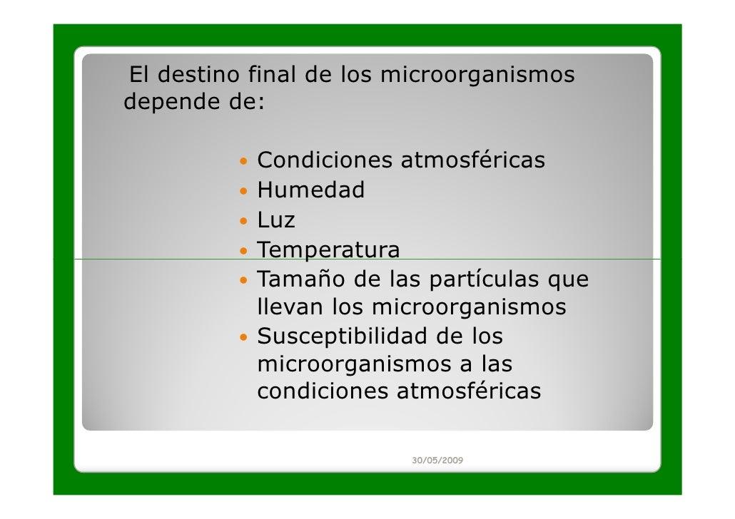 El destino final de los microorganismosdepende de:           Condiciones atmosféricas           Humedad           Luz     ...