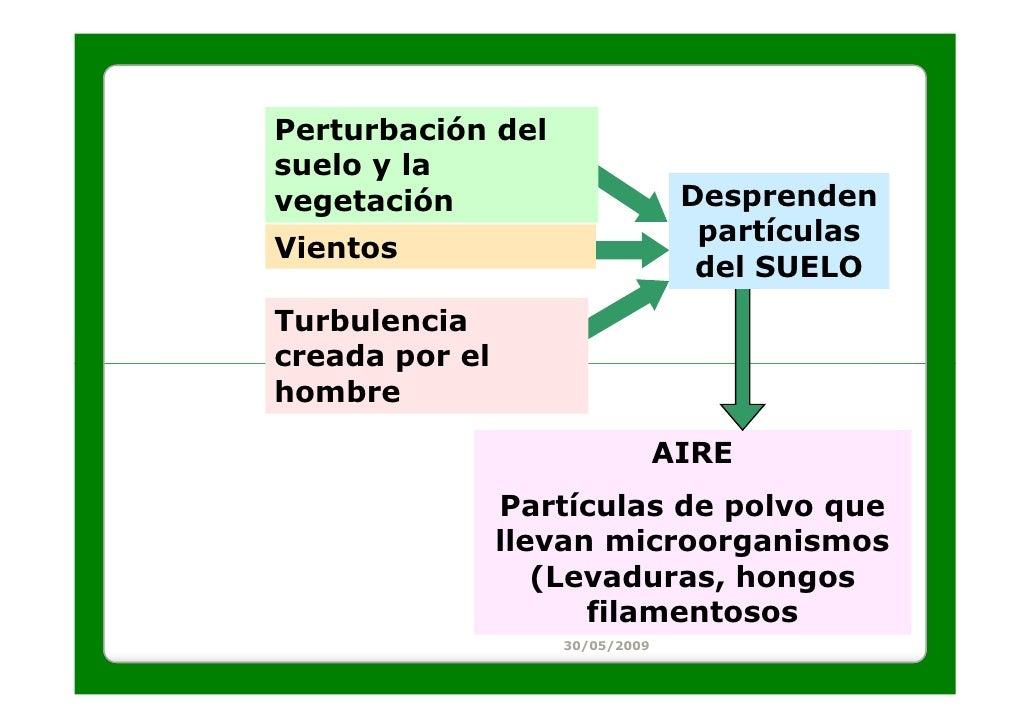 Perturbación delsuelo y lavegetación                       Desprenden                                  partículasVientos  ...