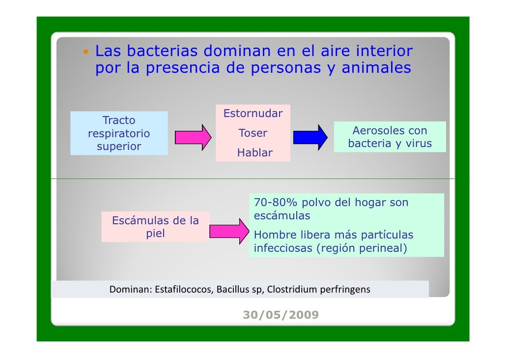 Las bacterias dominan en el aire interior por la presencia de personas y animales                              Estornudar ...
