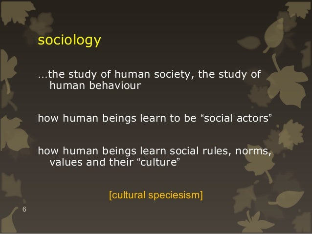 """sociology …the study of human society, the study of human behaviour how human beings learn to be """"social actors"""" how human..."""