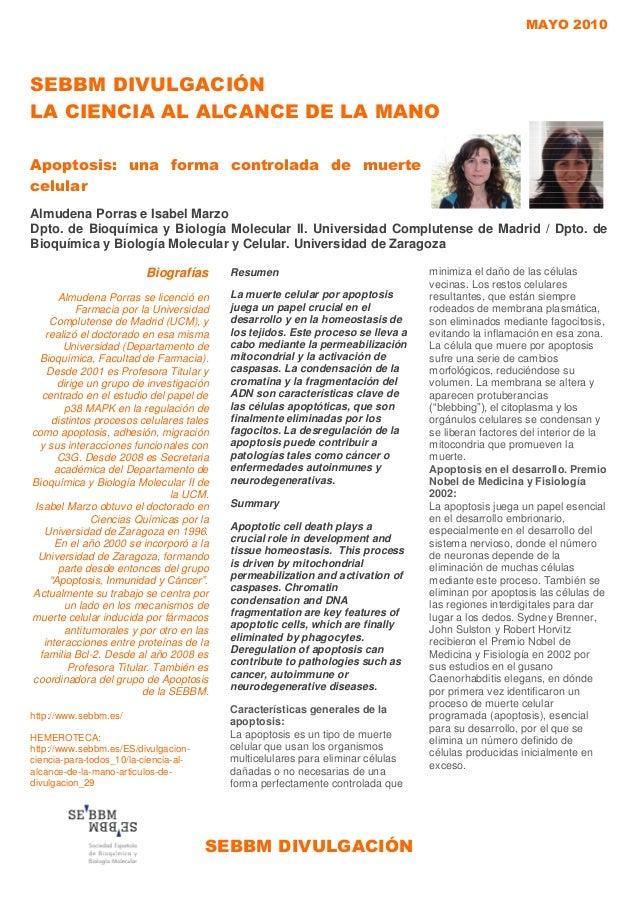 MAYO 2010SEBBM DIVULGACIÓNSEBBM DIVULGACIÓNLA CIENCIA AL ALCANCE DE LA MANOApoptosis: una forma controlada de muertecelula...