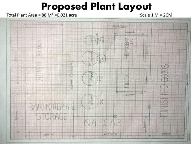 Mayonnaise plant design for Suggested garden layout