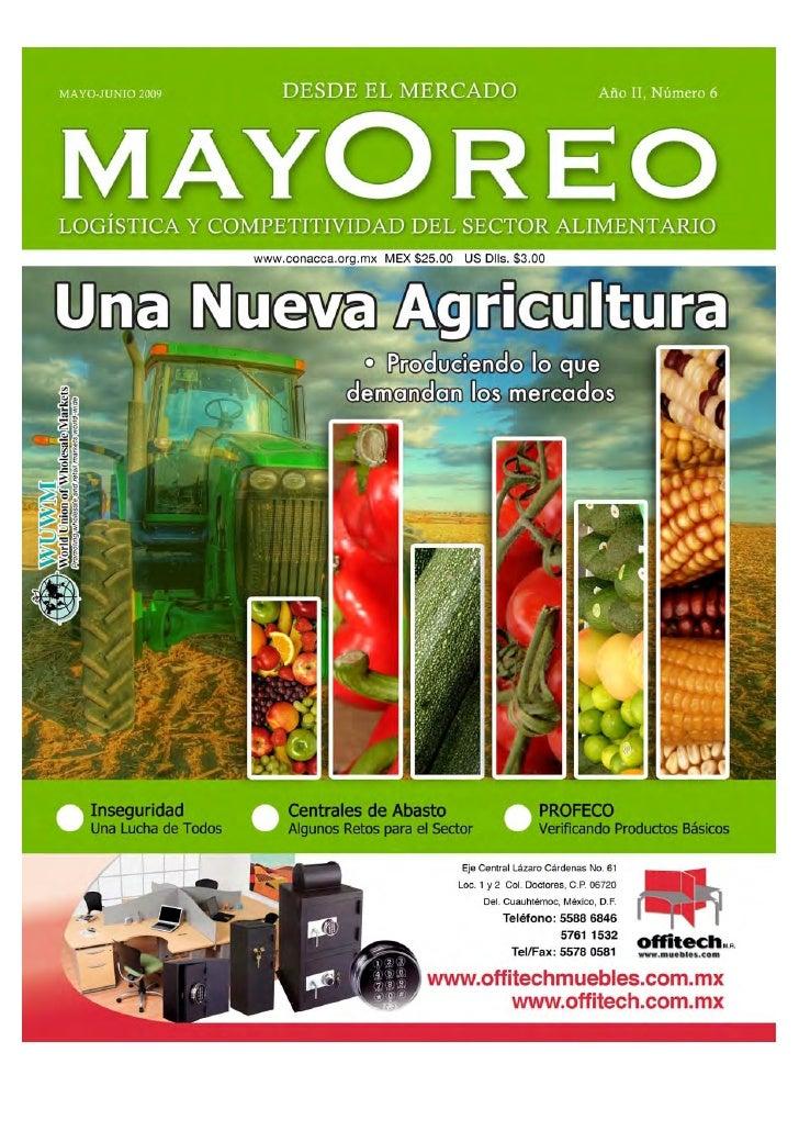 Mayoreo 6