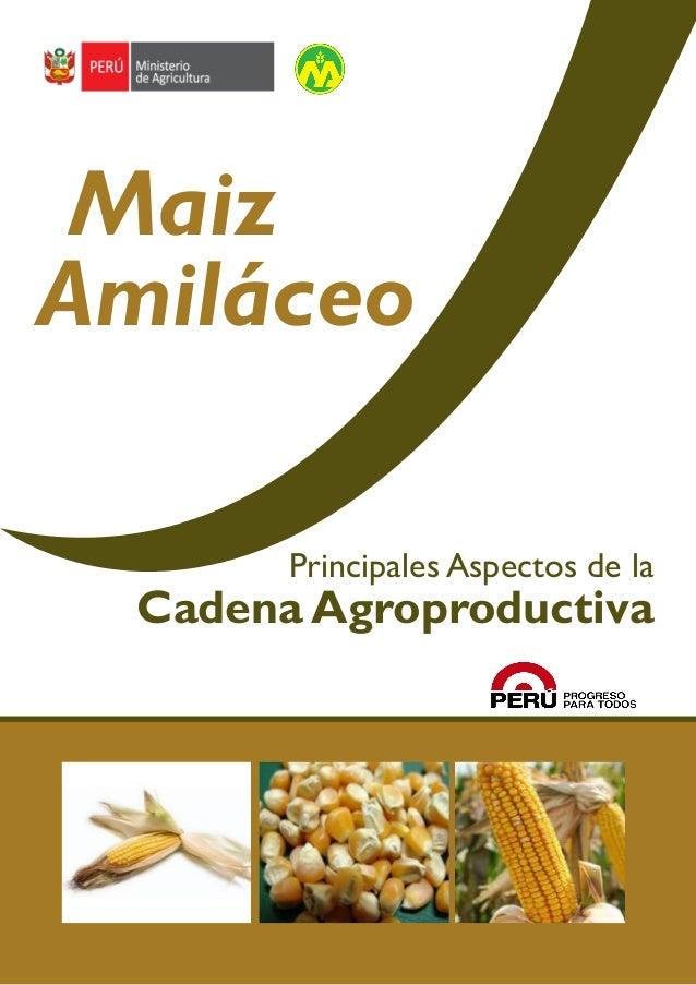 Cadena agroproductiva del MAÍZ AMILÁCEO  Maiz Amiláceo Principales Aspectos de la  Cadena Agroproductiva  1
