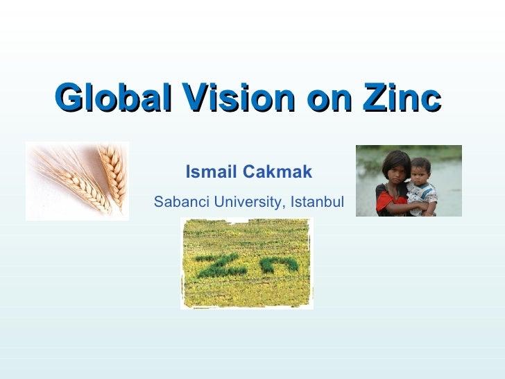 Global Vision on Zinc         Ismail Cakmak     Sabanci University, Istanbul