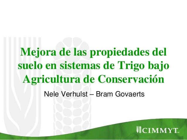 Mejora de las propiedades del suelo en sistemas de Trigo bajo Agricultura de Conservación Nele Verhulst – Bram Govaerts