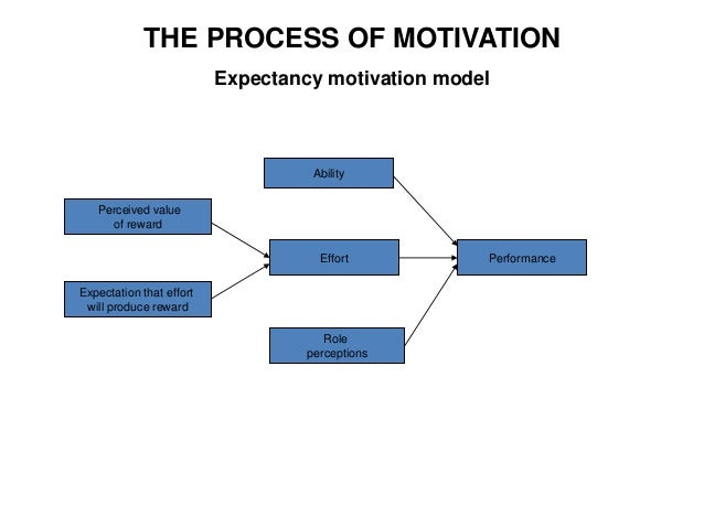 hrm motivation and performance Motivation theories seek to explain why employees are motivated by and satisfied with one type of work than another it is essential that mangers have a basic understanding of work motivation because highly motivated employees are more likely to produce a superior quality product or service than employee who lack motivation.
