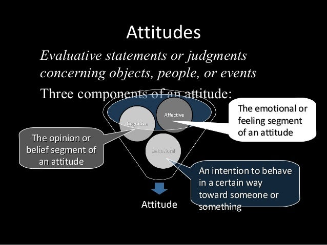attitude and job satisfaction in ob Work attitudes motivation and in ob, researchers believe that attitudes have three main components: furthermore, managers can focus on job satisfaction.