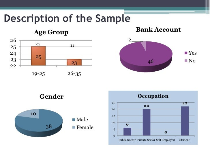 Description of the Sample       Age Group                                    Bank Account 26                              ...