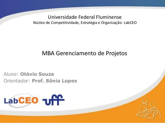 Universidade Federal Fluminense Núcleo de Competitividade, Estratégia e Organização- LabCEO Aluno: Otávio Souza Orientador...
