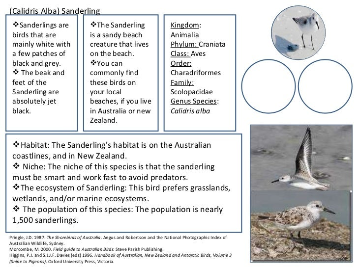 Mbfs student field guide 3 6 sciox Choice Image