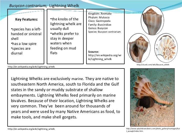 Mbfs student field guide 4