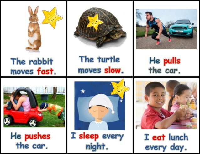 Slow things that move 11 signs